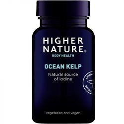 Higher Nature Ocean Kelp Vegetarian Tablets 180