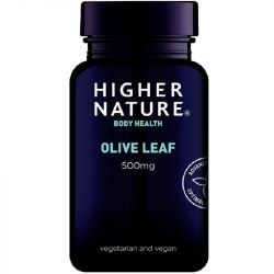 Higher Nature Olive Leaf 500mg Vegetarian Capsules 90