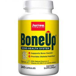 Jarrow Formulas BoneUp Capsules 240