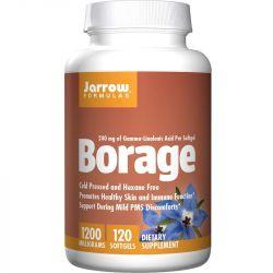 Jarrow Formulas Borage GLA Softgels 120