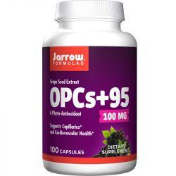 Jarrow Formulas OPCs + 95 Grape Seed Extract 100mg Caps 100