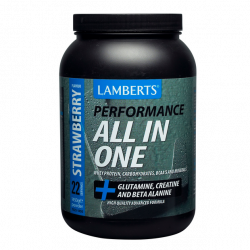 Lamberts Performance All In One 1450g