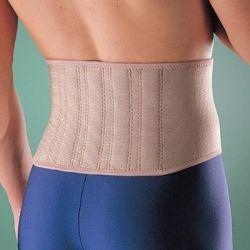 Oppo Biomagnetic Back Support