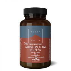 Terranova Mushroom Synergy Super-Blend Powder 40g