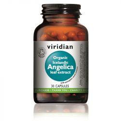 Viridian Organic Icelandic Angelica Leaf Extract Vegicaps 30