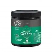 Terranova Green Child Sneaky Greens Super Shake Powder 180g