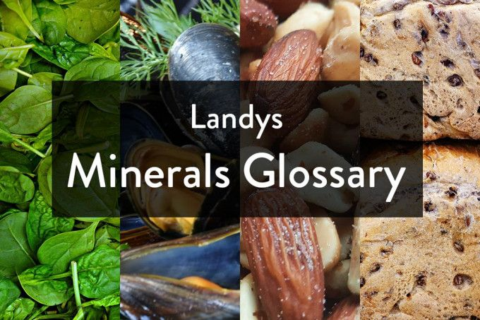 Why Do We Need Minerals? A Glossary From Landys