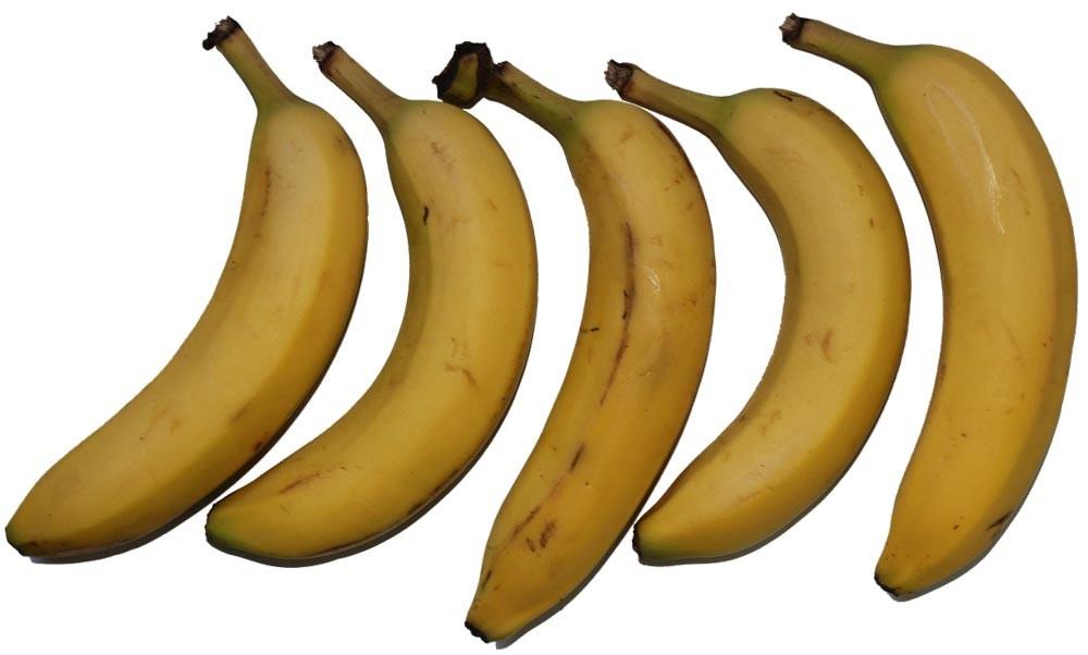Bananas provide a reliable source of potassium