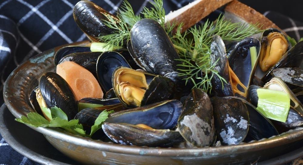 Mussels are rich in copper