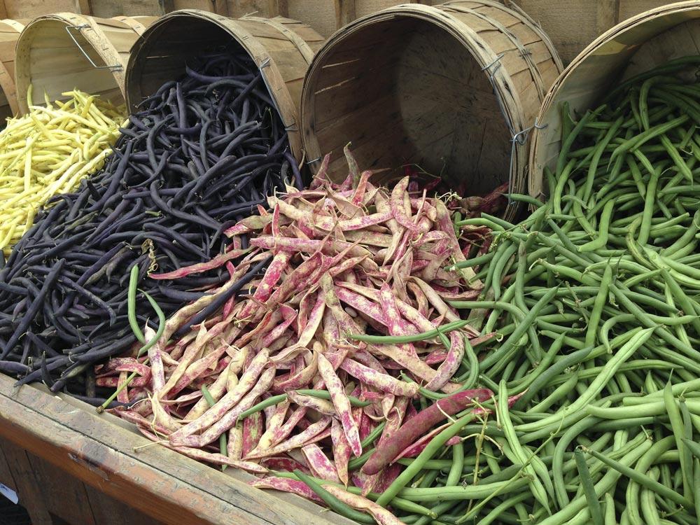 Legumes and Beans provide Vitamin B7 (Biotin)