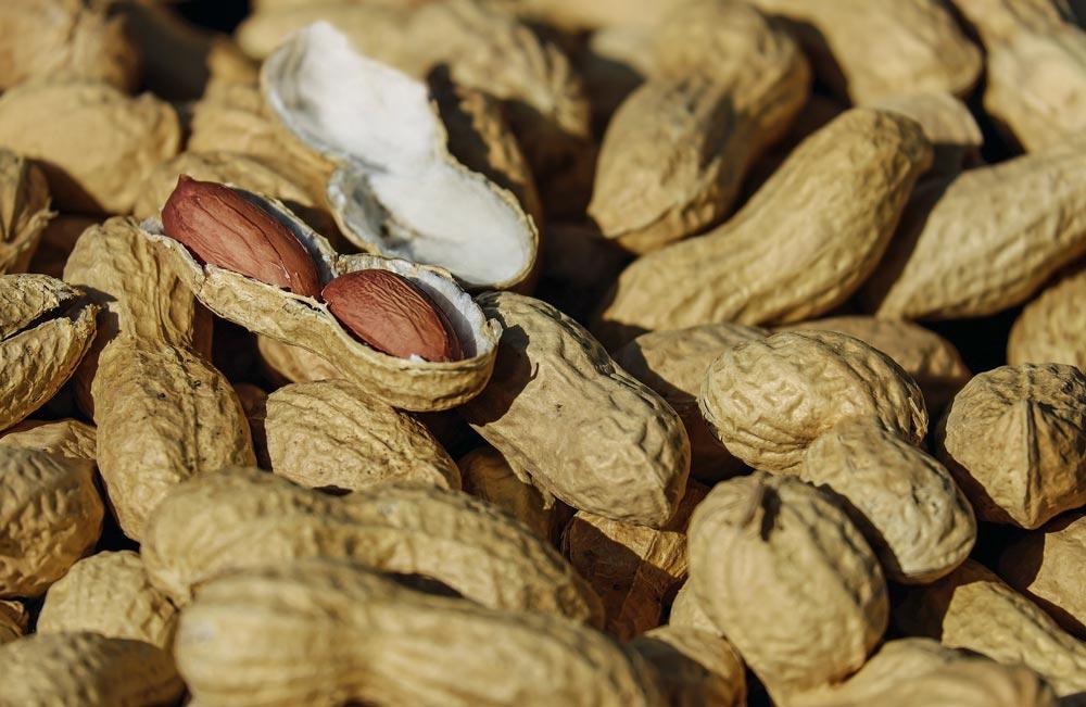 Nuts provide Vitamin B6 (Pyridoxine)