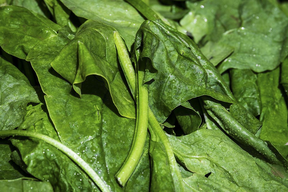 Leafy green vegetables such as Spinach are great for Vitamin B9 (Folacin)